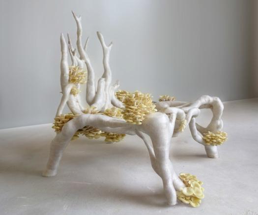 myceliumchair.jpg(mediaclass-landscape-large.1df3d6f438769113d26ed8577bc84d61afea2a7e)