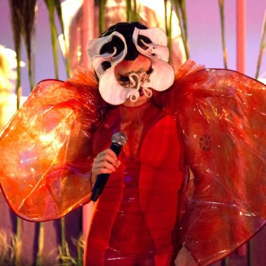 bjork-james-merry-live-masks-utopia-tour-design_dezeen_2364_col_4-852x568